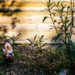 kindabreakanlalemantphotographepourburovelvet-37
